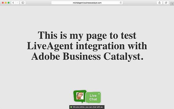 Adobe Business Catalyst | LiveAgent